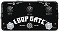 Loop Gate